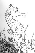Sea Horse outline
